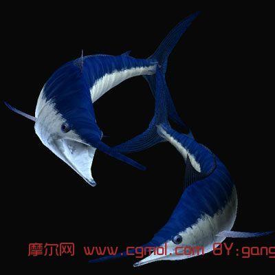 剑鱼3d模型,鱼类动物,动物模型