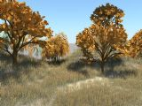 深秋,秋天场景,室外maya3d模型