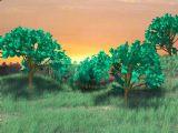 落日森林,春天场景,室外场景maya3d模型