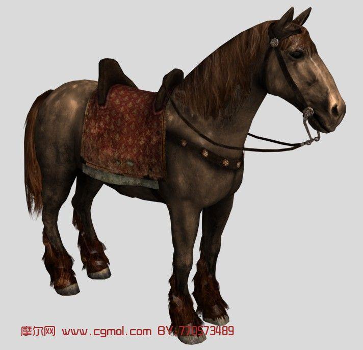 动物模型3d模型