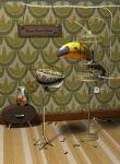 大嘴鸟先生maya模型