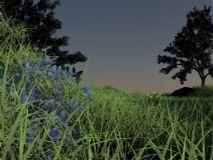 草地,树林,室外场景maya模型