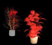 花草,植物,盆景max模型