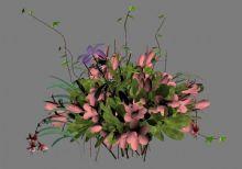 花,植物,家居装饰max模型