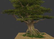 树木,植物,室外场景max模型