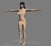 女体,女性,卡通人物max模型