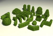 花草,植物,灌木从max模型