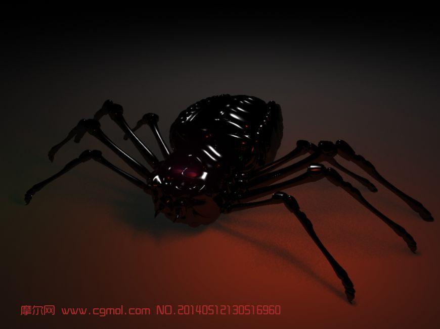 巨型蜘蛛_昆虫_动物模型