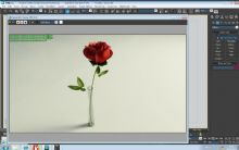 3D玫瑰 插花模型