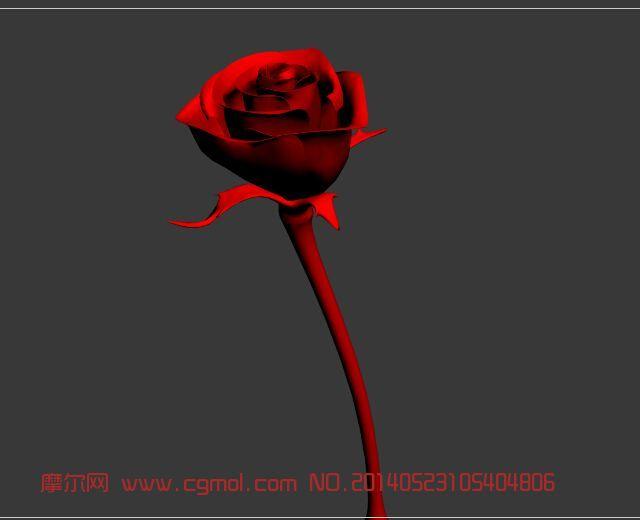 红玫瑰模型