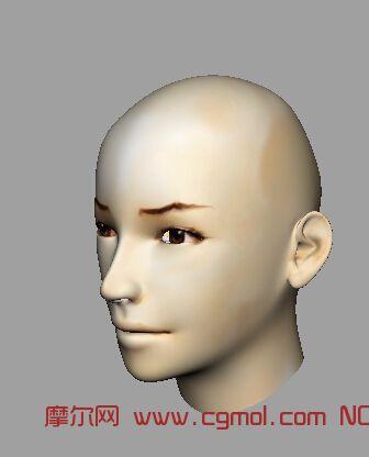女人头模型