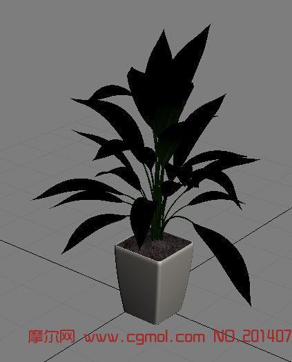 3D模型盆栽