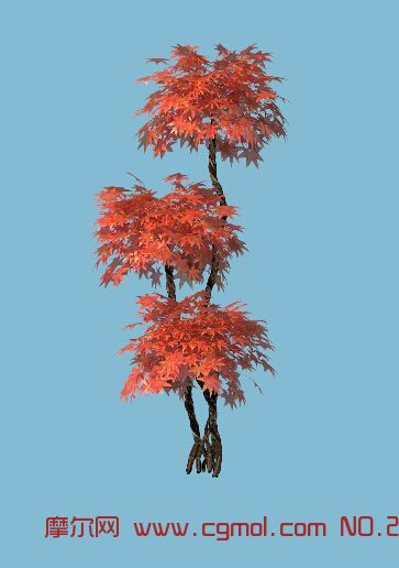 > 桉树树根盘根树纹木纹树木裸露树皮砍伐森林桉树根