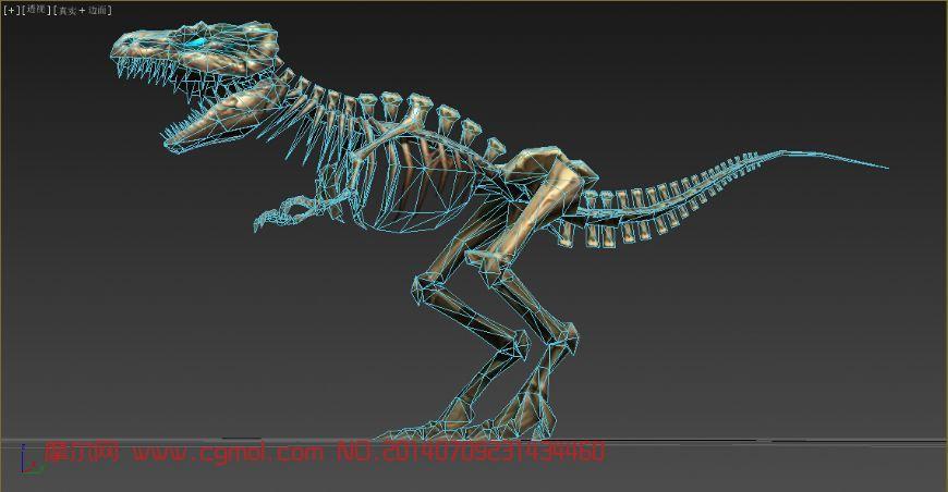 霸王龙骨架_哺乳动物_动物模型