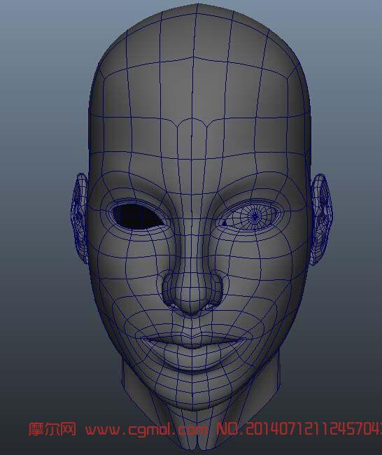 女人头3D模型