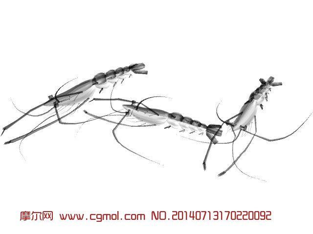 maya龙虾模型_爬行动物