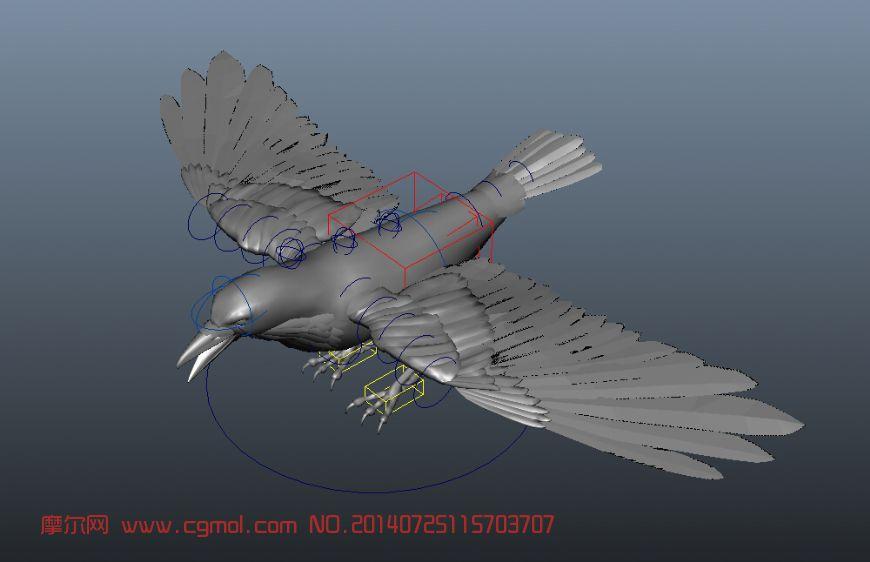 乌鸦maya模型 带绑定