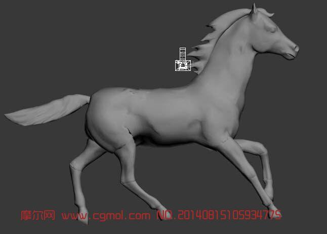 马的奔跑_哺乳动物_动物模型