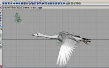 飞行的天鹅3D模型