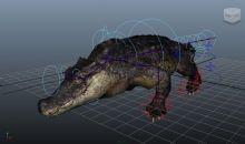 鳄鱼maya模型