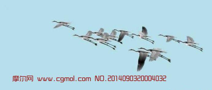 仙鹤群飞行动画