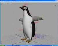 实用企鹅模型 带绑定