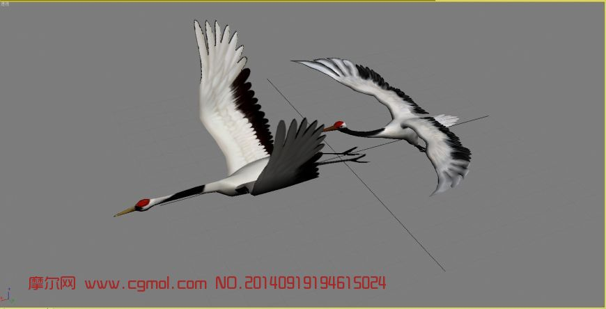 两只丹顶仙鹤_飞禽动物_动物模型_3d模型免费下载