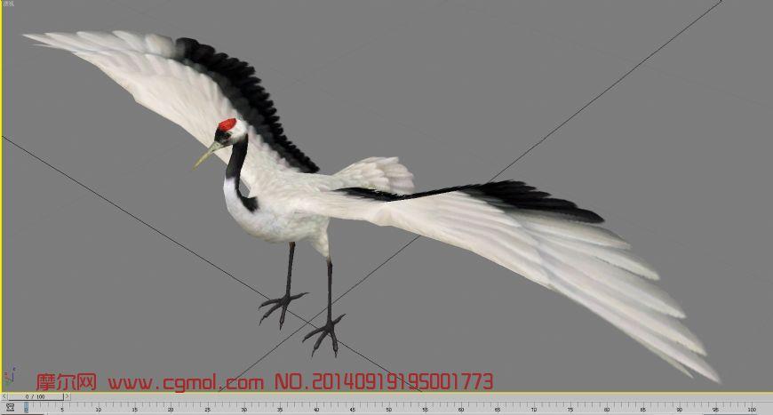 神鸟丹顶鹤_飞禽动物_动物模型_3d模型免费下载_摩尔网