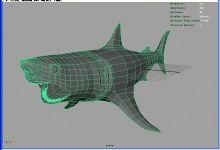 张开血盆大口的鲨鱼
