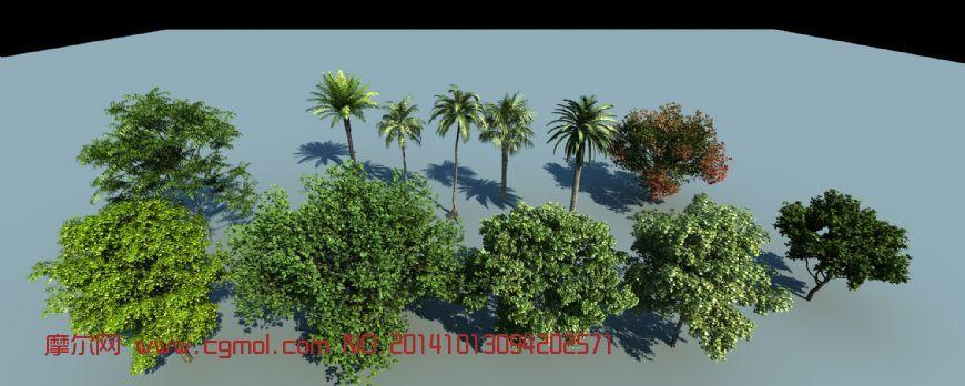 椰树,香樟树等景观植物_树木模型_植物模型_3d模型