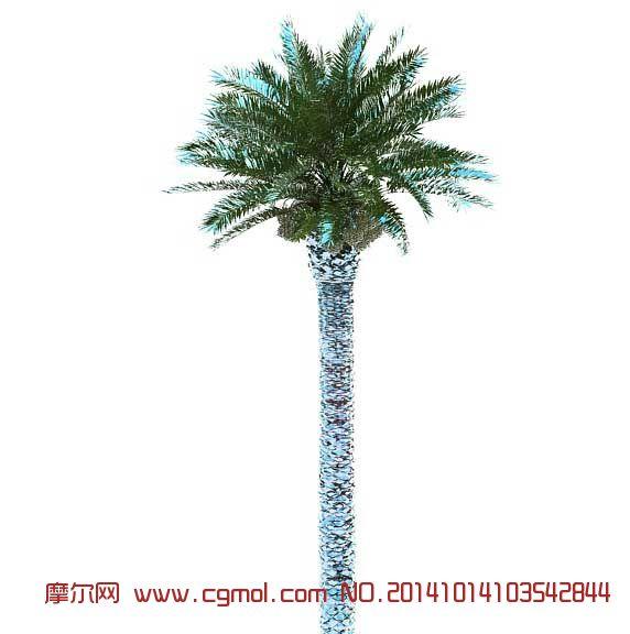 棕榈树_树木模型_植物模型_3d模型免费下载_摩尔网