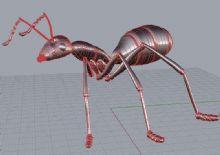 蚂蚁3dm模型