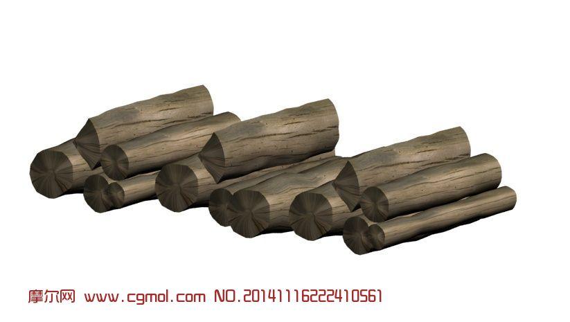 木材微观结构模型