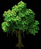 Q版可爱树木模型