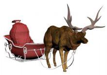 圣诞老人的麋鹿