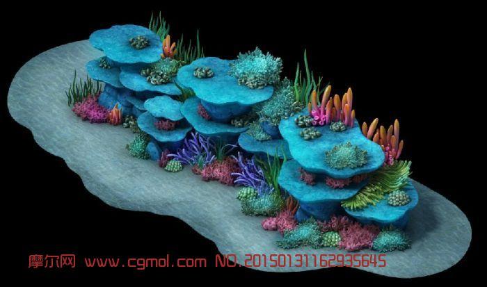 海底礁,珊瑚,贝壳,海草