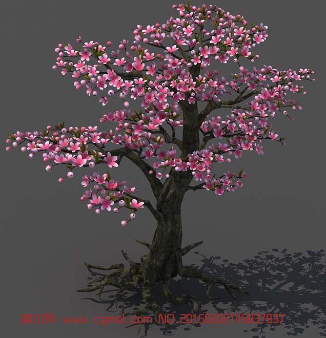 开满花朵的桃树