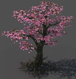 �_�M花朵的桃��