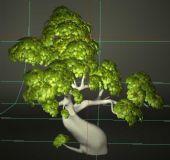 卡通大树模型