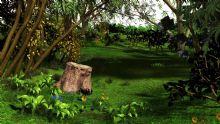 森林,自然景色maya模型