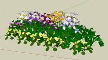 花卉小品,小花朵su模型