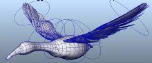 已经绑定了的鸟,还简单做了动画,比如翅膀扇动。需要直接下载