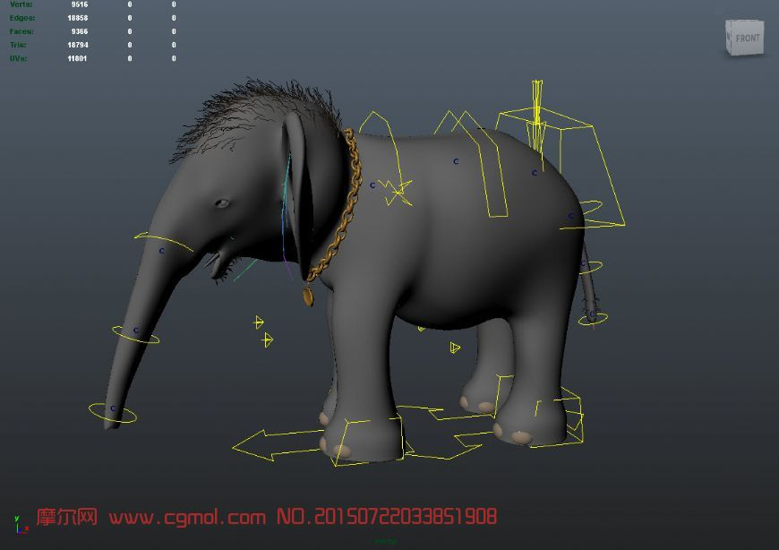带绑定的小象