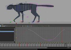 四肢动物行走基本绑定maya