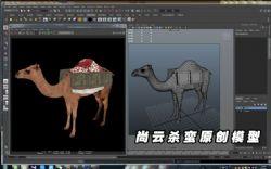 丝绸之路骆驼Camel