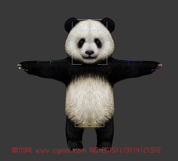 萌萌的熊猫带绑定