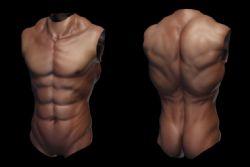 男人上身躯干ztl模型