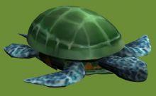 3D乌龟模型