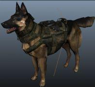 军犬maya模型