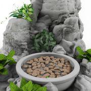 3D园林假山水池石头景观模型